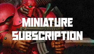 mini subscription